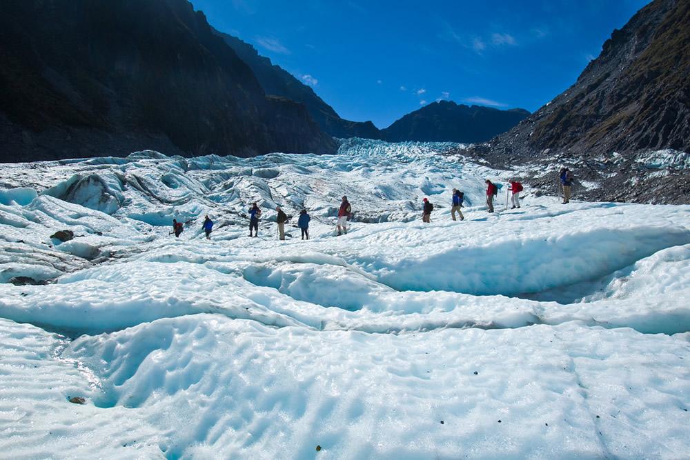 Conociendo Glaciers en Nueva Zelanda